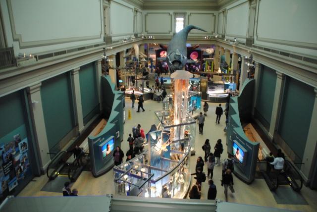 visiter musee washington