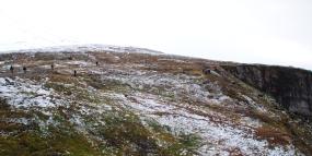 Vue d'en haut du mont Storsteinen