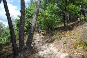 Randonnée autour du lac de Grangent