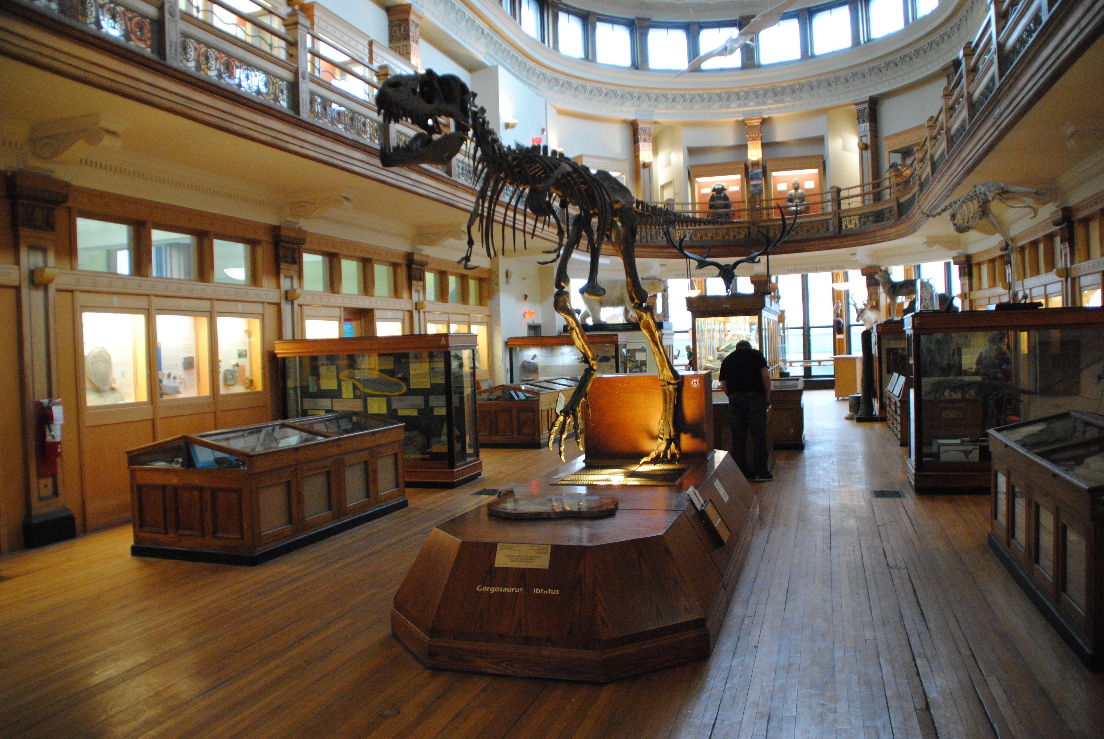 Le musée Redpath
